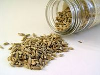 fennel-seed