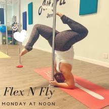 flex n fly promo